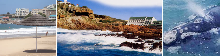 Mossel Bay Accommodation and Tourist Guide